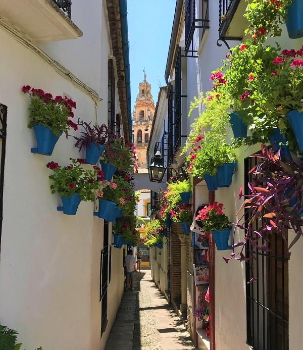 スペイン南部の「コルドバ」にある、「花の小道」の風景