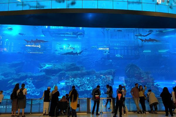 ドバイモールにある「ドバイ水族館」